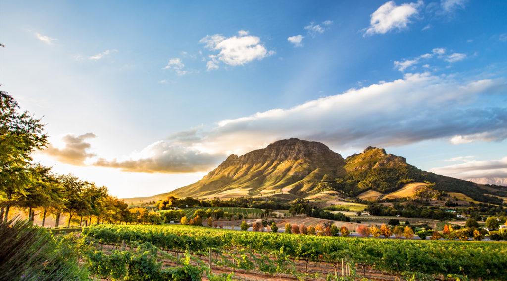 Um dos melhores destinos de 2020 é a África do Sul