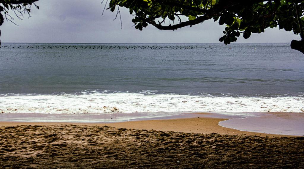 imagem de praia em camboriu