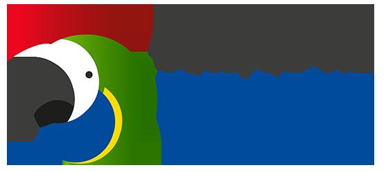 logo empresa travel in brazil, conteúdo europa brasileira