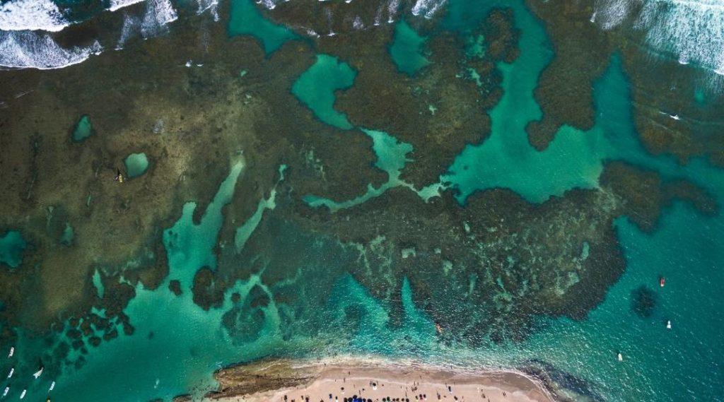 pontos turísticos de alagoas, vista aérea das piscinas naturais nas praias de Maceió