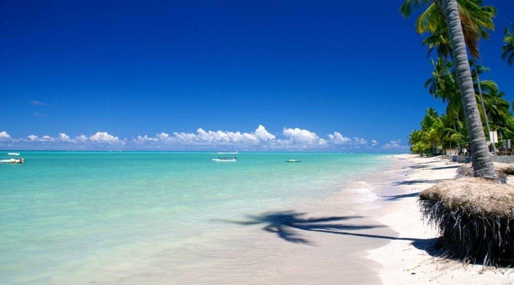 Foto de Maragogi, palmeiras e areia branca, mar e céu azuis e diversos barcos brancos na distância